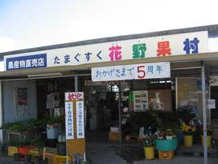 hanayaka1.jpg